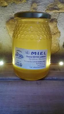 Miel d'accacia